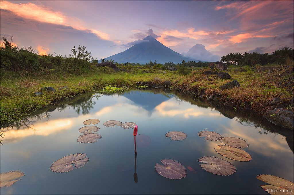 mayon_volcano_tom_falcon